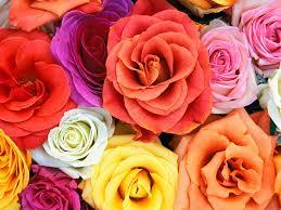 En Couleurs Imprimer Nature Fleurs Num Ro 22058