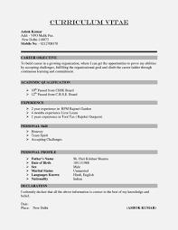 Sample Resume Template Labor Short Cv Sample Resume Template Cover Letter Curriculum Vitae 23