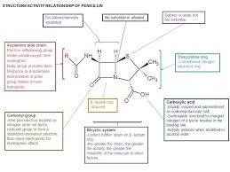 Webmedcentral Com An Illustrated Review On Penicillin And