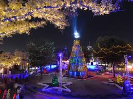 Christmas Lights Viewing Dallas The Most Dazzling Christmas Light Displays Around Dallas In