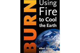 Albert Bates – Using Fire to Cool the Earth | RASA
