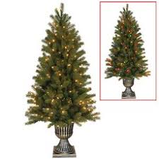 National Tree Downswept Douglas Fir Entrance Tree Holiday Decoration - 5  foot