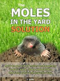 garden moles. The Moles In Yard Solution - How To Get Rid Of And Gophers Garden
