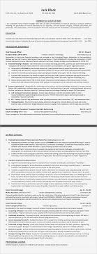 Writing Professional Resume Samples Resume Designs