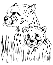 Small Picture Coloring Pages Animals Leopard Print Coloring Pages Free
