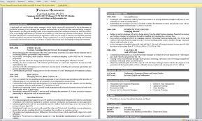 Example Of The Best Resume Best Resume Examples EssayscopeCom 18