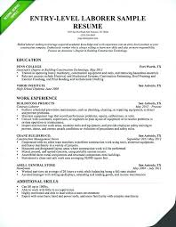 Resume Title Examples Extraordinary Resume Title Examples For Entry Level Orlandomovingco