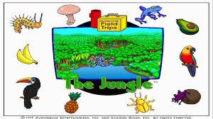 junior field trips junior field trips lets explore the jungle with buzzy the knowledge bug walktrough