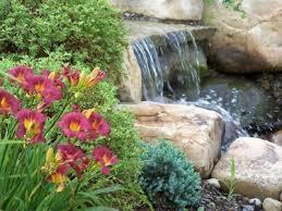 garden pond supplies. Pond Supplies, Koi Fish Food, Pumps Garden Supplies N