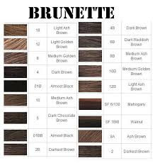 Color Mixing Chart For Hair Full Hair Color Charts For Blondes Brunettes And Frosty