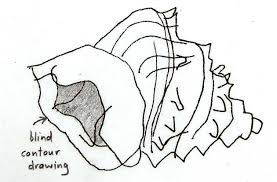 blind contour line drawing