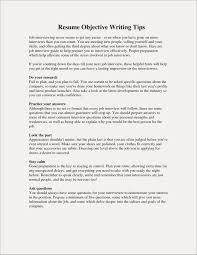 The Best Objective For Resumes How To Prepare A Resume For Interview Examples Resume Examples