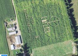 Small Picture 38 best Google earth images on Pinterest Ancient aliens