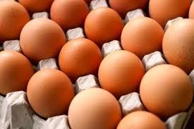 Bildresultat för ägg