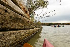 kayakers drift by one of the many abandoned wooden ships decaying in mallows bay along the