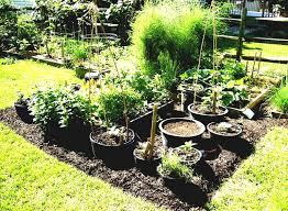 Small Picture plant pot ideas Archives Garden Trends