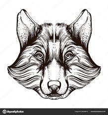 голова волка наброски векторные иллюстрации изолированные белом фоне
