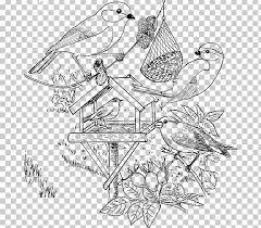 Bird Stichting Landschapsbeheer Flevoland Vogels Voeren Kleurplaat
