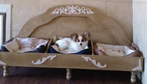 20 Wonderful Pieces of Furniture For Pets Homes and Hues
