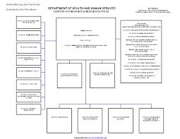 Cms Org Chart Cms Organizational Chart Pdfsimpli