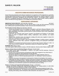 Resume Company Inspiration Best Resume Writing Service 44 New Professional Resume Service