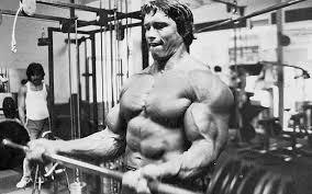 Weight Lifting Quotes 41 Wonderful 24 Arnold Schwarzenegger Quotes On Bodybuilding Motivation