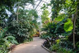 membership benefits daniel stowe botanical garden