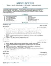 Business Cv Templates Cv Samples Examples