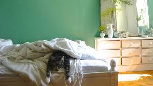 Die farbgestaltung sollte das unterstützen. Die Schonsten Ideen Fur Die Wandfarbe Im Schlafzimmer