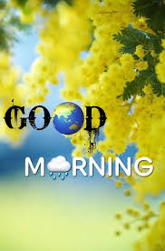 good morning images photos flowers pictures