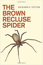 The Brown Recluse Spider Richard S Vetter 9780801479854 Amazon