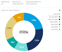Doughnut Chart The Donut Chart Salesforce Lightning Reporting And Dashboards Book