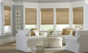 Home Decoration Appealing Bamboo Shades Design For Bright Living Magnificent Living Room Shades Decor