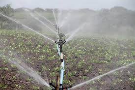 create diy drip irrigation system