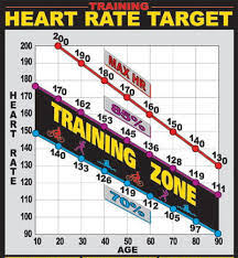 Aerobic Workout Heart Rate Chart The Best Way To Find Your Aerobic Heart Rate Roworx