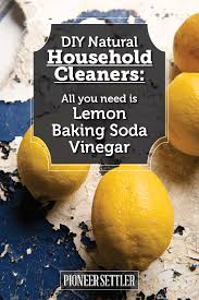 DIY Natural Household Cleaners: How to clean with Lemon, Baking Soda, and  Vinegar