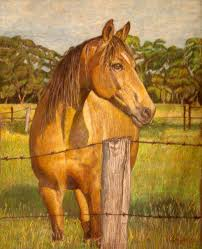 horse drawing in color. Interesting Drawing Advertisements To Horse Drawing In Color