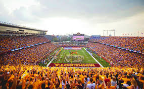 Image result for university of mn