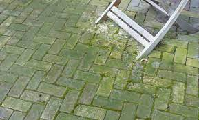 how do i remove green algae from my