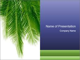 Coconut Palm Leaves Powerpoint Template Backgrounds Google Slides