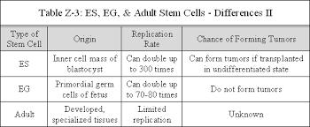 stem cells hopes huntington s disease information tbl z 3 es eg adult stem cells differences ii