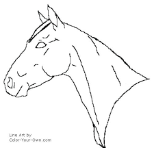 horse face coloring page.  Horse Horse Head Coloring Page Heads Drawing At Free For Personal Use Pages Face  Colouring  On Horse Face Coloring Page O