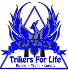 manual triadics website