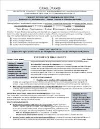 Chic Non Profit Executive Resume Examples Also Sample Resume