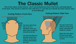 Image result for mullet hair