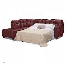 sectional sofa queen bed. Full Size Of Sectional Sofas:unique Sofa With Hide A Bed Queen