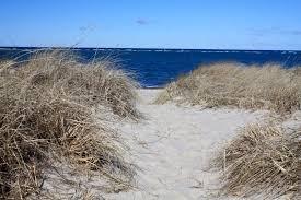 Top 5 Secret Best Cape Cod Beaches The Platinum Pebble