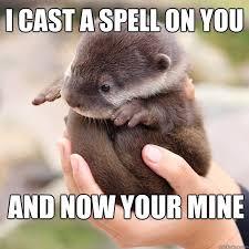 mysterious otter memes | quickmeme via Relatably.com