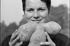 「農家 豊作」の画像検索結果