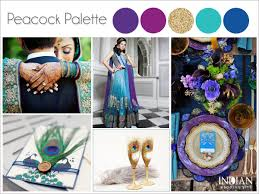 Peacock Colors Living Room 25 Best Ideas About Peacock Color Scheme On Pinterest Peacock